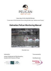 Dalmatian Pelican Monitoring Manual